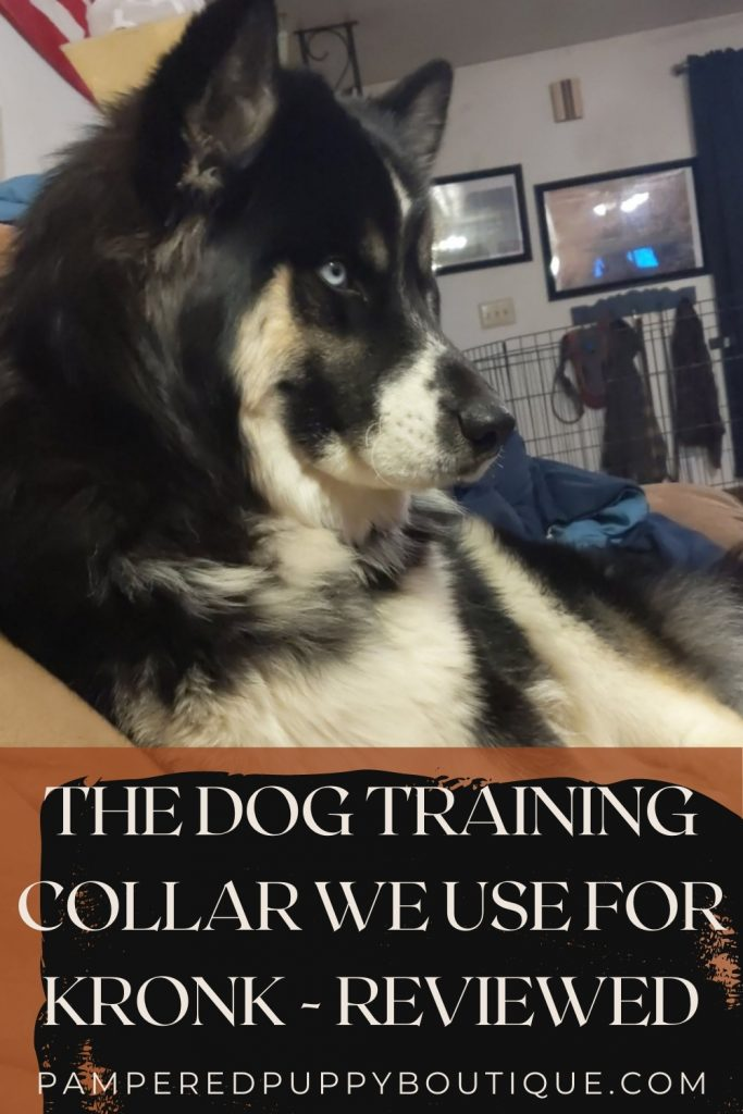 Discover the training collar Kronk prefers to be trained with. The Sportdog field trainer dog training collar 425X reviewed by actual dog owners.