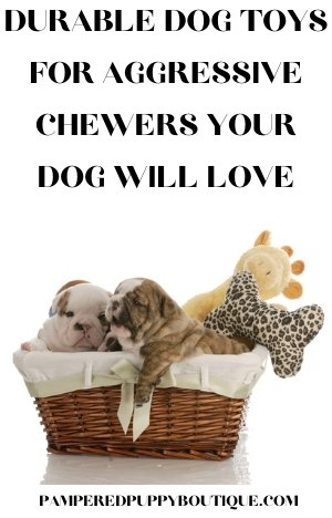Durable Dog Toys for Aggressive Chewers Your Dog Will Love